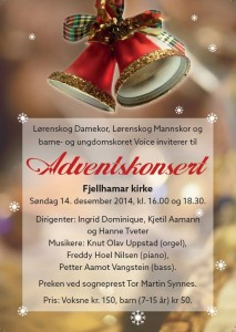 Flyer_advent-14